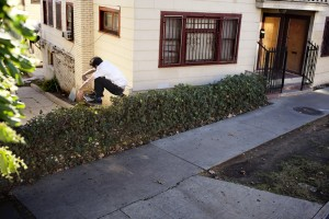Don't you love it when dudes make LA look raw? Bump to bush. Photo: Chris Whitaker